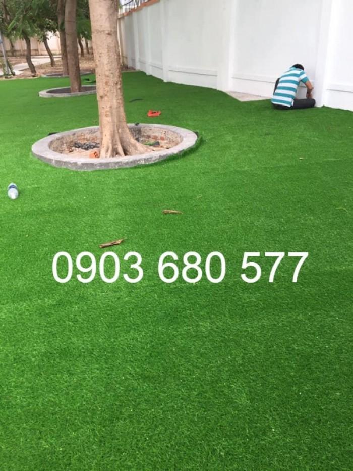 Chuyên bán cỏ nhân tạo cho trang trí trường mầm non, sân chơi, sân bóng, sân golf19