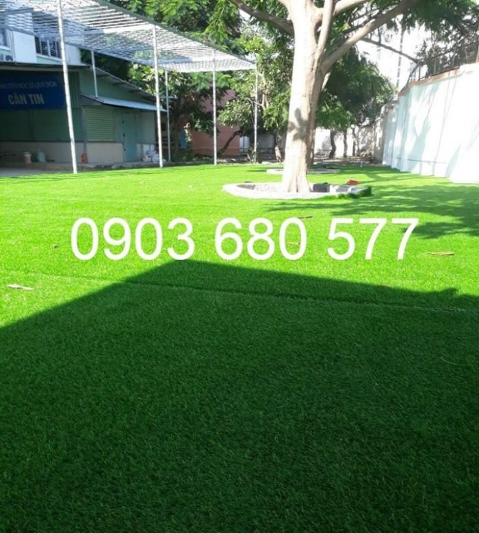 Chuyên bán cỏ nhân tạo cho trang trí trường mầm non, sân chơi, sân bóng, sân golf16