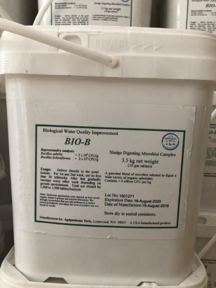 Men xử lý đáy dạng hạt BioB Talet2