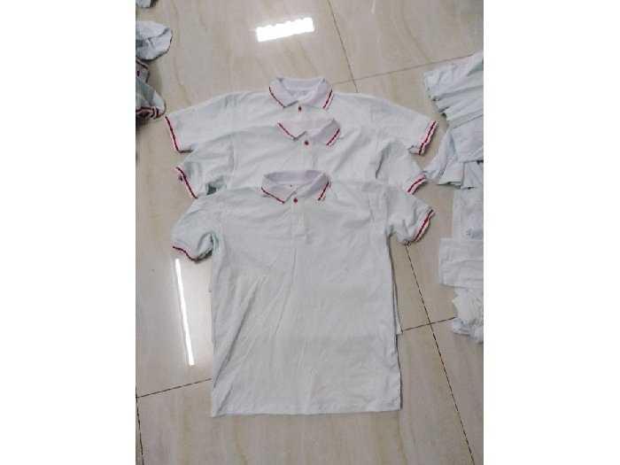 Sỉ áo thun cotton 100% trắng cổ sọc đỏ0