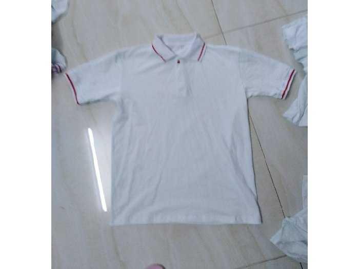 Sỉ áo thun cotton 100% trắng cổ sọc đỏ1