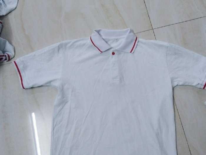 Sỉ áo thun cotton 100% trắng cổ sọc đỏ2