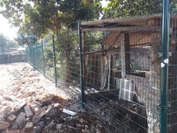 Hàng rào lưới thép hàn D5 a 50x150 mạ kẽm sơn tĩnh điện45