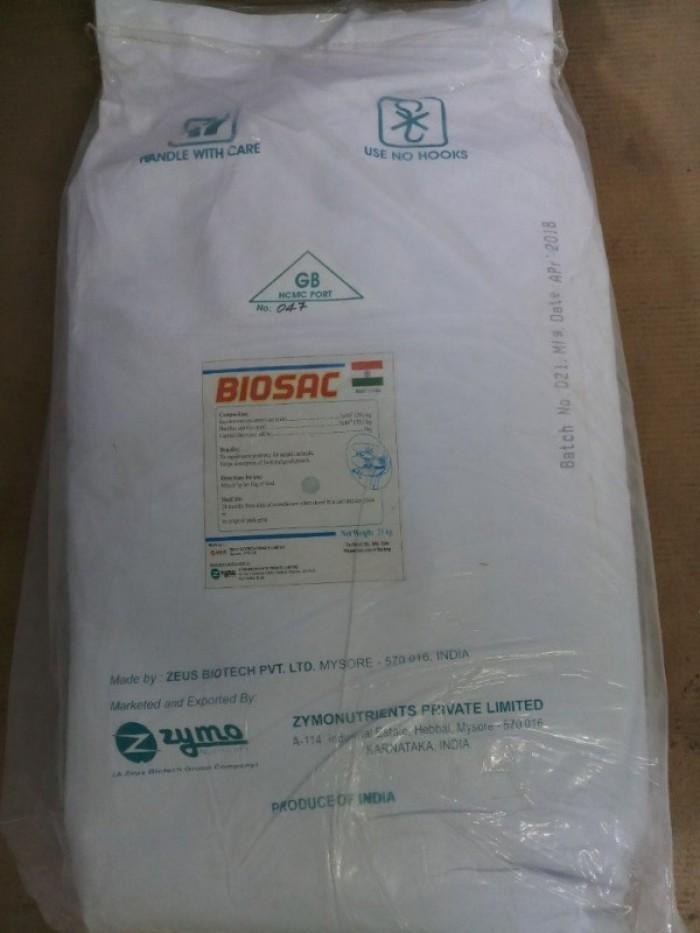 Men vi sinh gây màu nước BIOSAC1