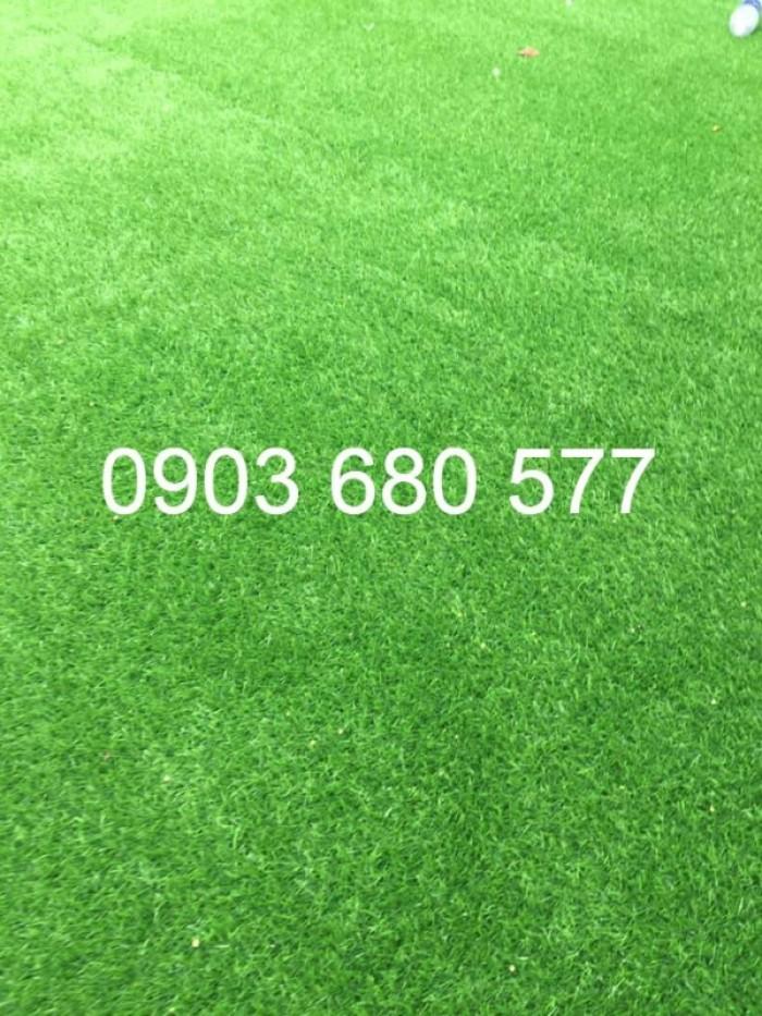 Chuyên thi công cỏ nhân tạo cho trường học, công viên, sân chơi, sân bóng đá,...18
