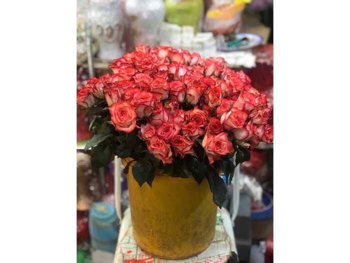 Shop hoa Hương Trúc0