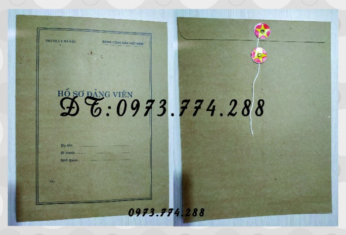 Lý lịch của người xin vào Đảng - Mẫu 215