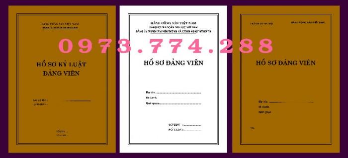 Lý lịch Đảng viên mẫu 1 - HSĐV - bìa trắng10