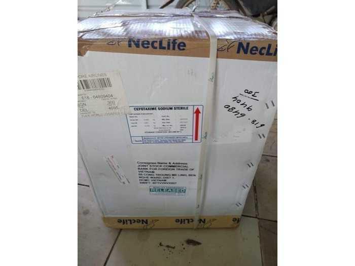 cefotaxime neclife2