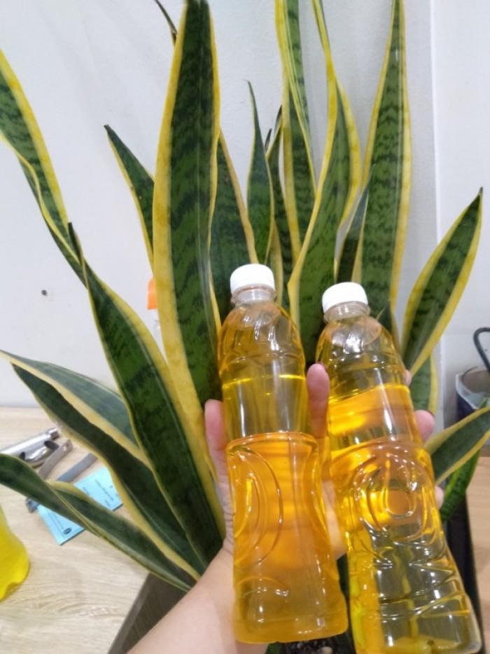 Máy ép dầu thực vật NANIFOOD NNF 801 New3