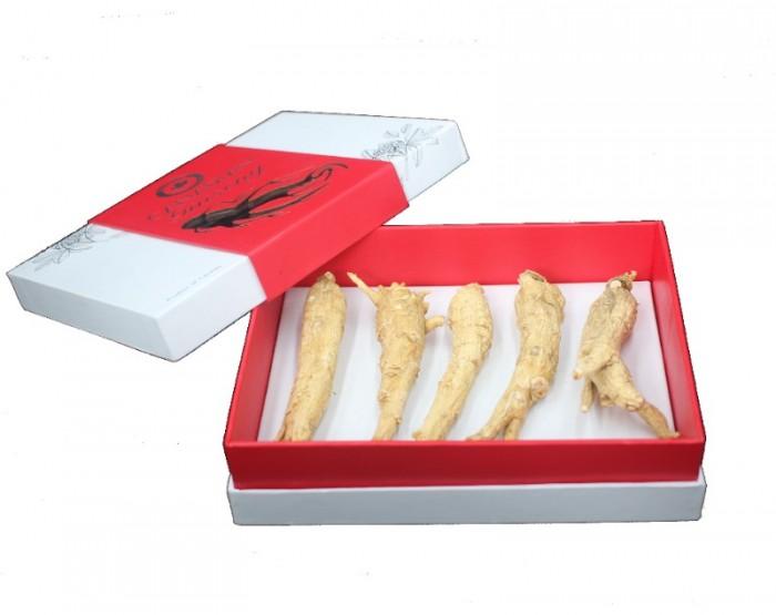 Nhân sâm nguyên củ Canada SilverLife Premium 500g1