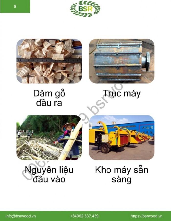 MÁY BĂM DĂM GỖ DI ĐỘNG  (DẦU DIESEL)  BSR-BC1000 6-10 T/H Máy băm gỗ cây thành dăm gỗ woodchip7