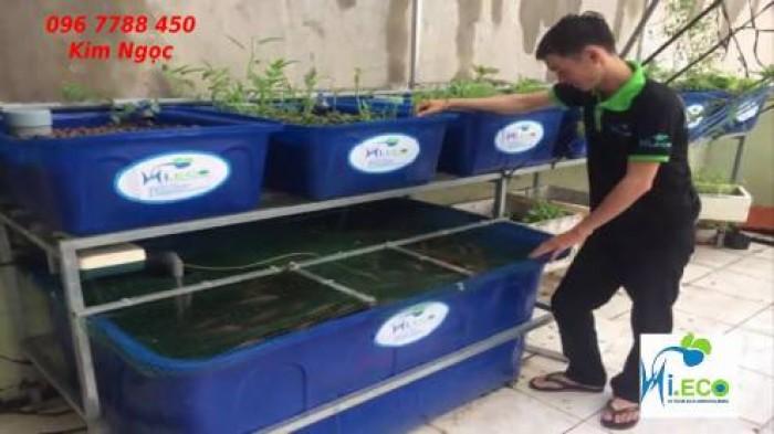 Thùng nhựa chữ nhật trồng rau, nuôi cá giá rẻ5