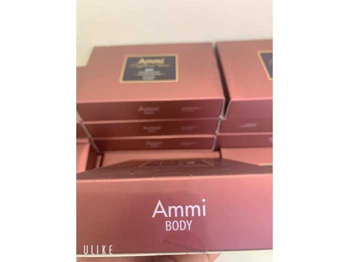 Ammi body2