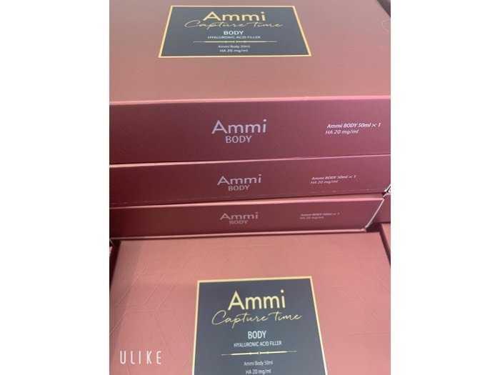 Ammi body3