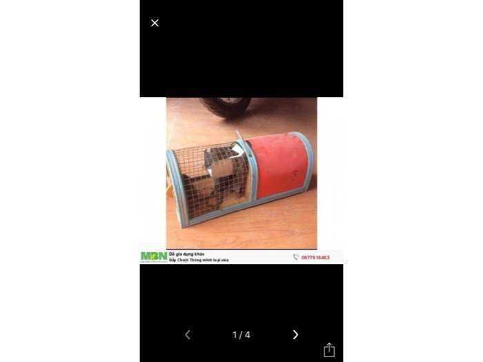 Bẫy Chuột Thông minh - An toàn , hiệu quả2