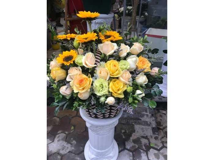 hoa mùng 8 tháng 34