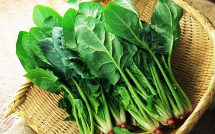 Hạt giống cải bó xôi (rau chân vịt) Rạng Đông0