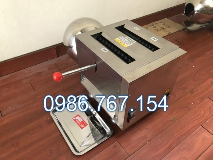 Máy làm viên tể, máy làm viên hoàn thuốc đông y 19mm (DZ-40) giá rẻ3