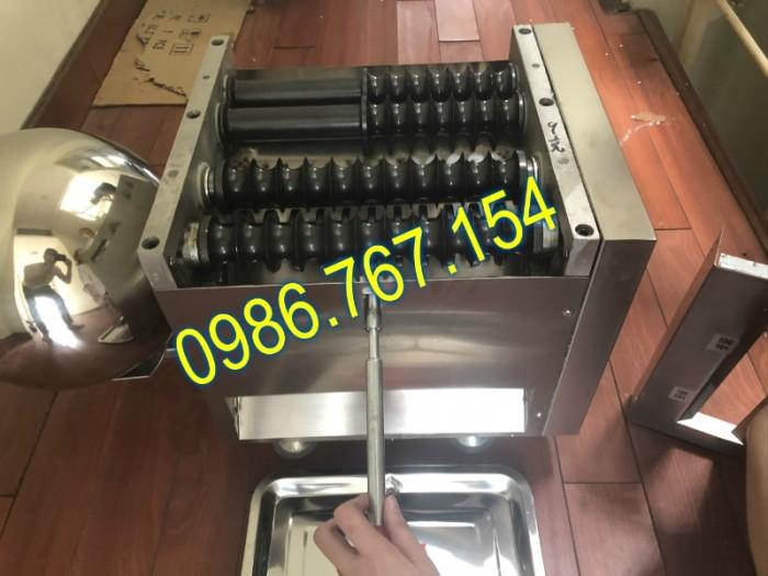 Máy làm viên tể, máy làm viên hoàn thuốc đông y 19mm (DZ-40) giá rẻ1