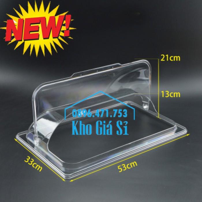 Nắp nhựa mica mở 180 độ đậy thức ăn - Nắp nhựa mica trong suốt mở 1/2 đậy khay buffet tại HCM9