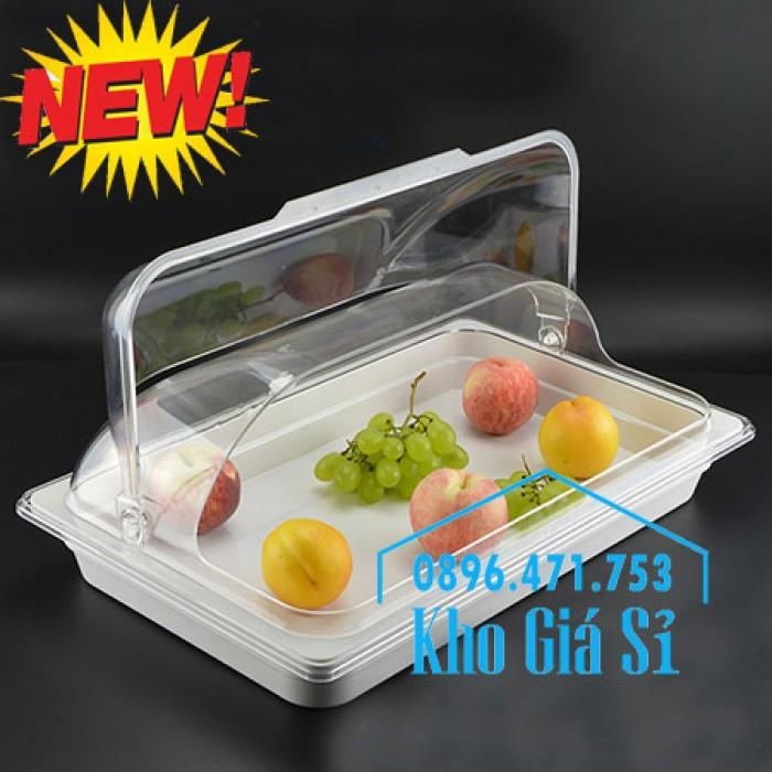 Nắp nhựa mica mở 180 độ đậy thức ăn - Nắp nhựa mica trong suốt mở 1/2 đậy khay buffet tại HCM6