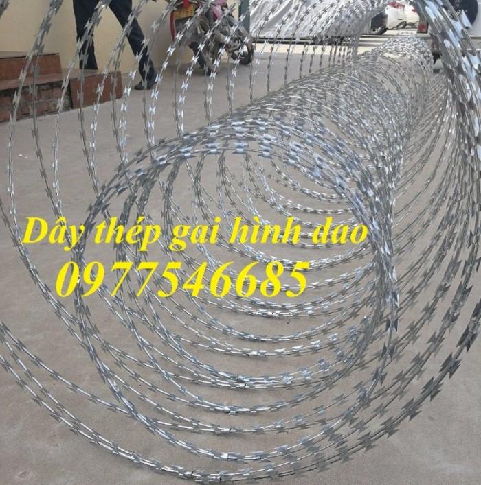 Chuyên sản xuất dây thép gai mạ kẽm, dây thép gai hình dao chống trộm1