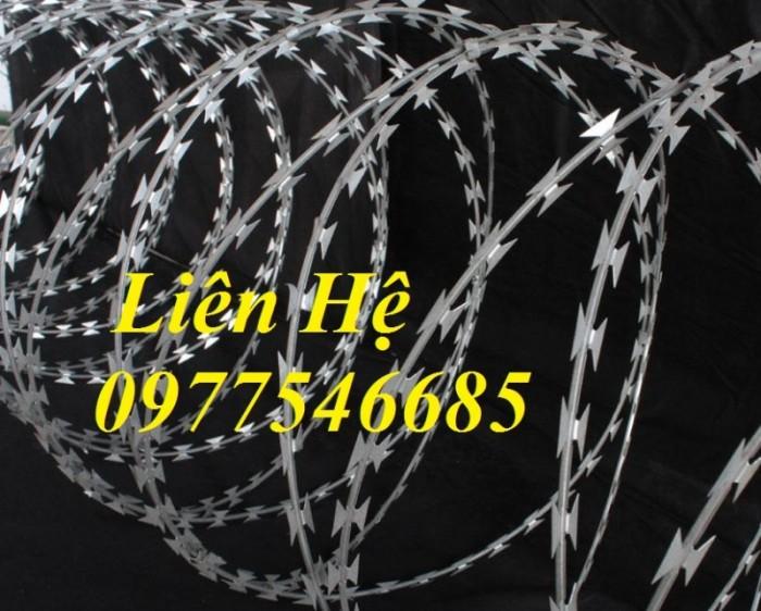 Chuyên sản xuất dây thép gai mạ kẽm, dây thép gai hình dao chống trộm2