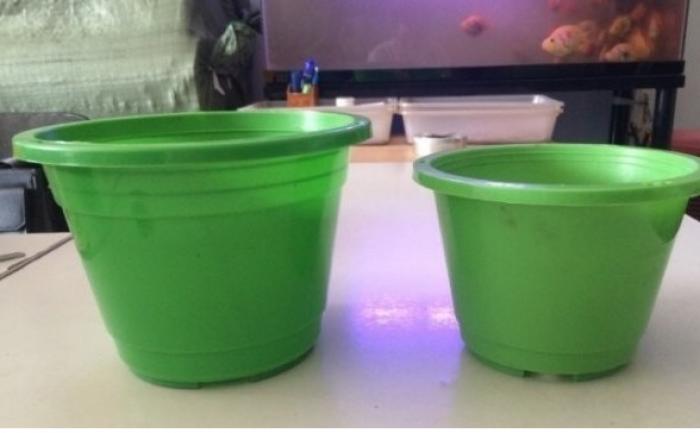 Chậu nhựa-trồng cây, hoa Chậu treo tròn- Chậu hoa nhựa Thakico