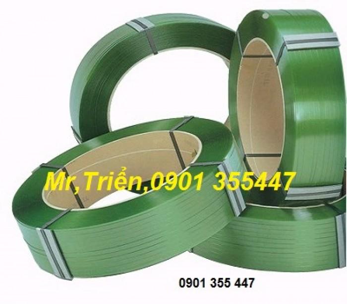Máy niềng dây đai nhựa pp dùng điện ZP-2012 giá tốt TP HCM5