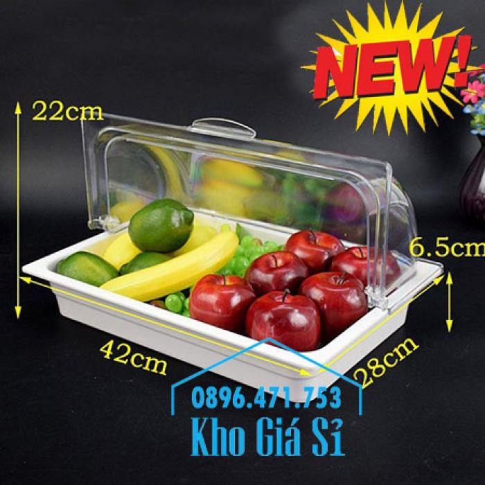Nắp khay buffet hình chữ nhật mở 180 độ - Nắp nhựa mica đậy khay 1/1 - Nắp nhựa trong suốt đậy khay 1/2 giá tốt tại HCM16