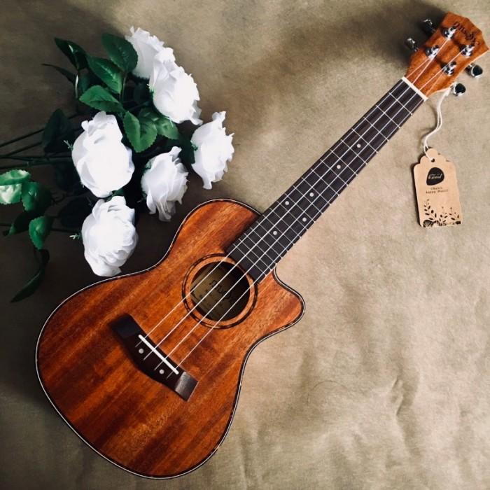 Dáng khuyết tựa Guitar, đem lại sự cứng cáp cho người chơi.  #Infor: • Size: Concert 23' (58 cm). • Chất liệu:  + Lưng và hông: gỗ Sapele. + Mặt đàn: gỗ Sapele.. • Đánh giá âm thanh: Tốt. • Thích hợp dùng tập chơi và cả dùng chơi lâu dài. => Bảo hành 2 năm sử dụng.0