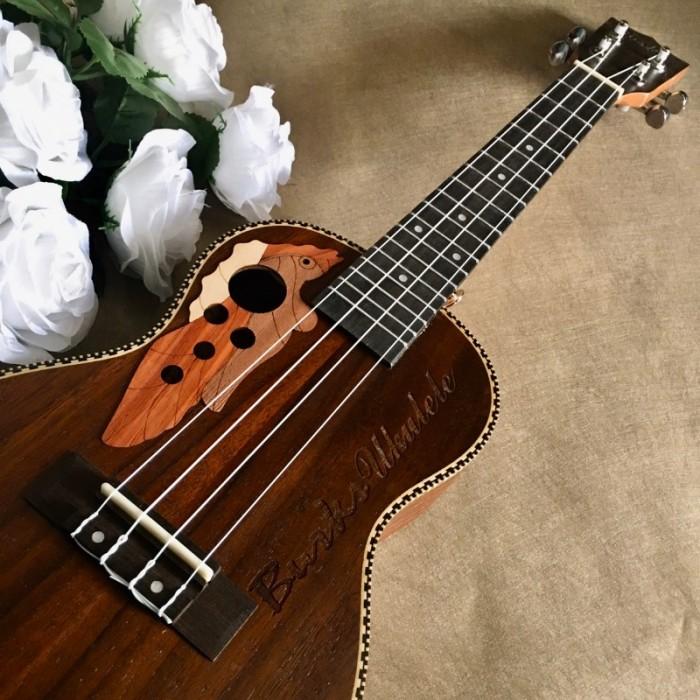 Đàn Ukulele gỗ cẩm lai | Size Concert 23' chính hãng.3