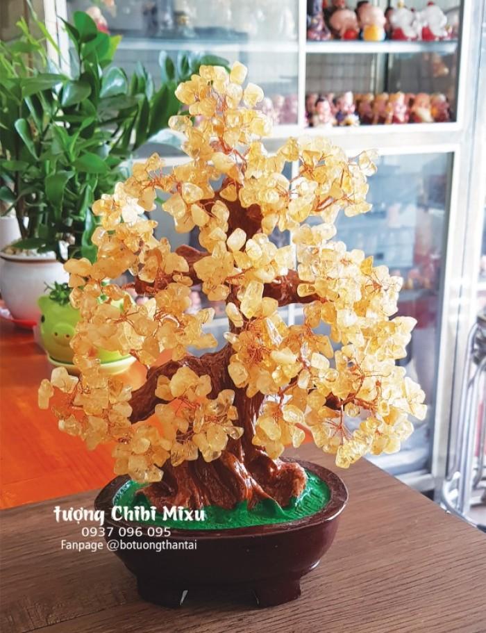 Cây Tài Lộc bằng đá Thạch Anh đa sắc 30cm4