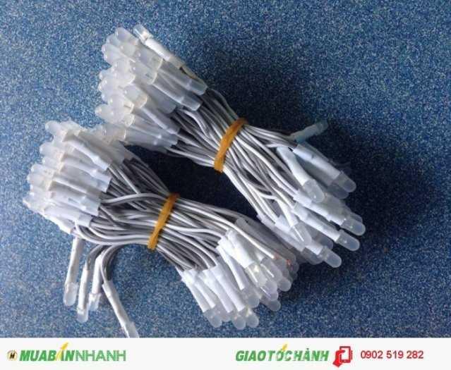Led ruồi 5mm Senyang1