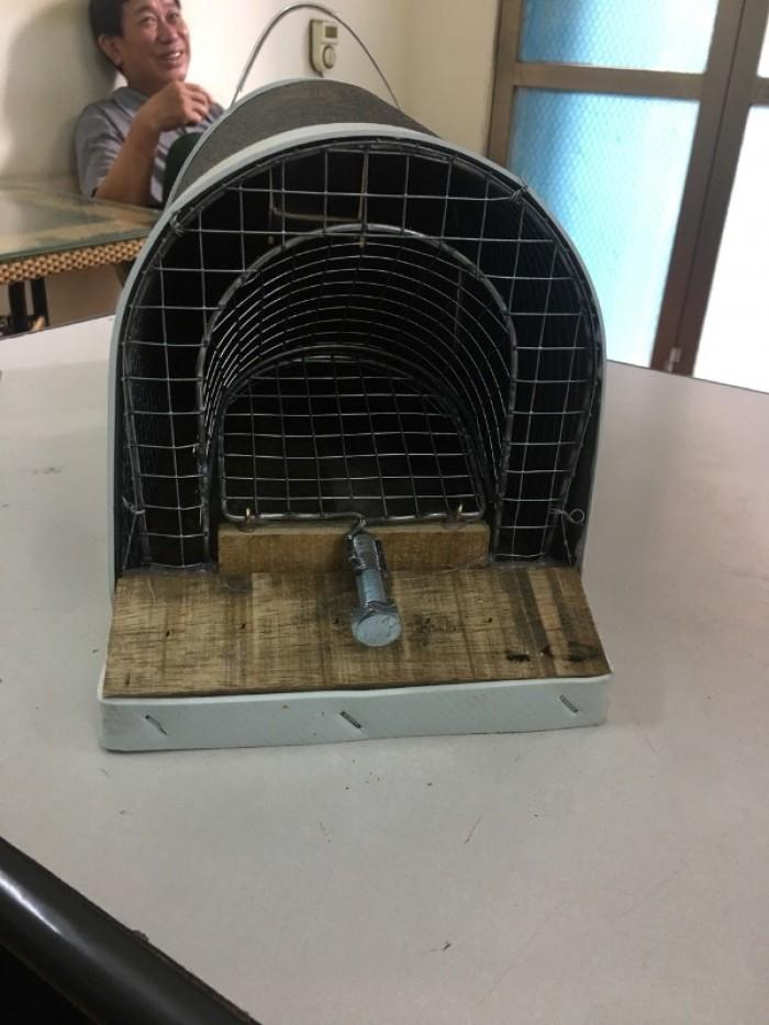 Bẫy chuột thông minh 2 ngăn dùng để bẫy chuột đồng, chuột nhà0