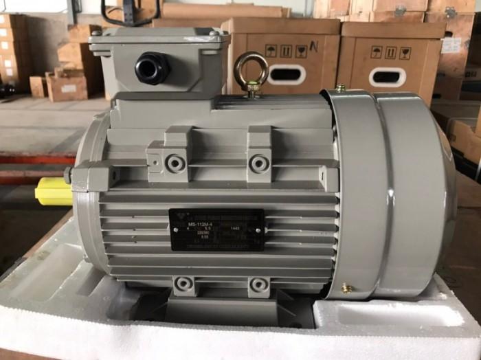 Motor TTT đa dạng các công suất, chất lượng đạt chuẩn quốc tế1