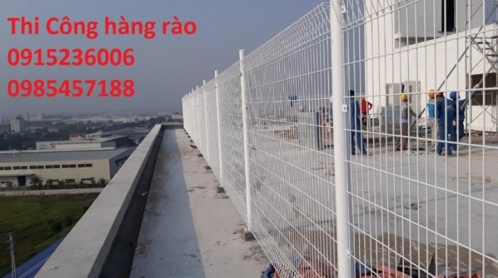 Hàng rào sơn tĩnh điện, mạ kẽm nhúng nóng, phi 4, phi 5, phi 6... hàng sẵn có6