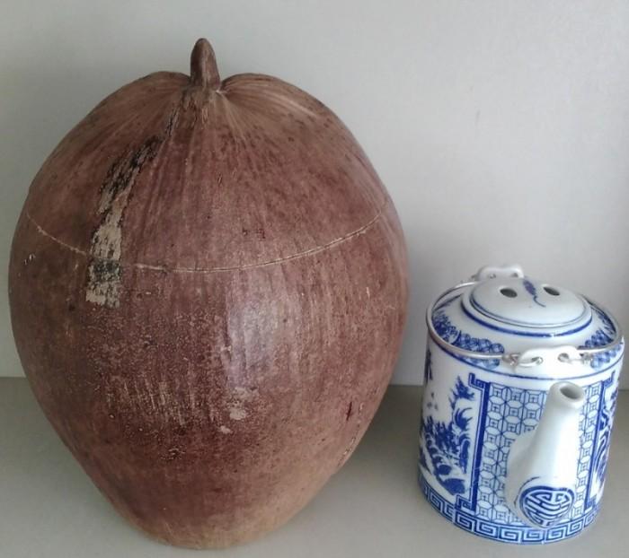 Combo: Vỏ + bình trà trái dừa (Bình trà 0,5-0,75 lít)0
