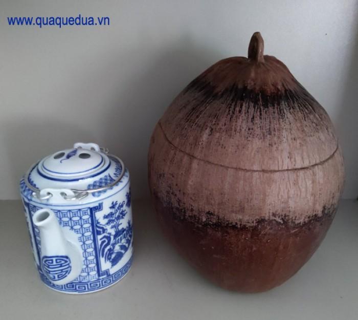 Combo: Vỏ + bình trà trái dừa (Bình trà 0,5-0,75 lít)8