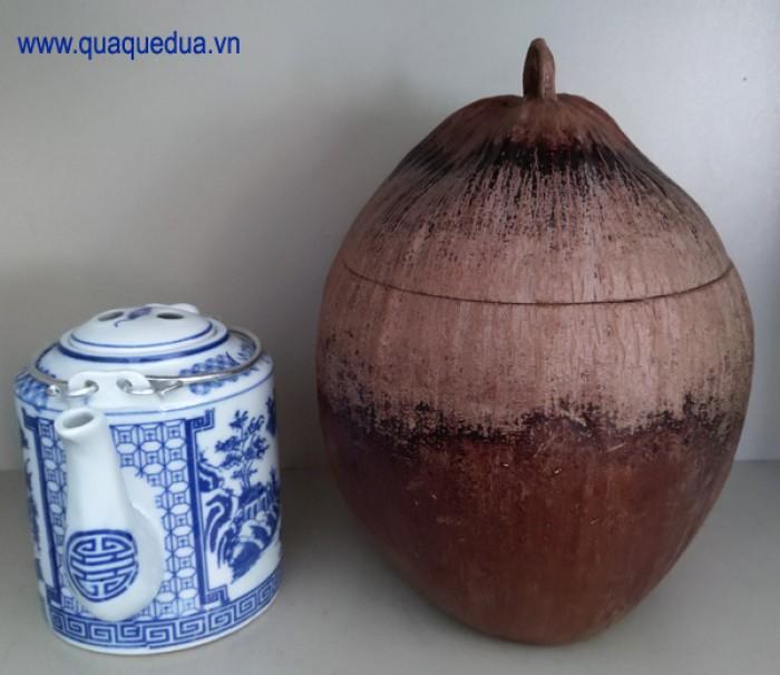 Combo: Vỏ + bình trà trái dừa (Bình trà 0,5-0,75 lít)5