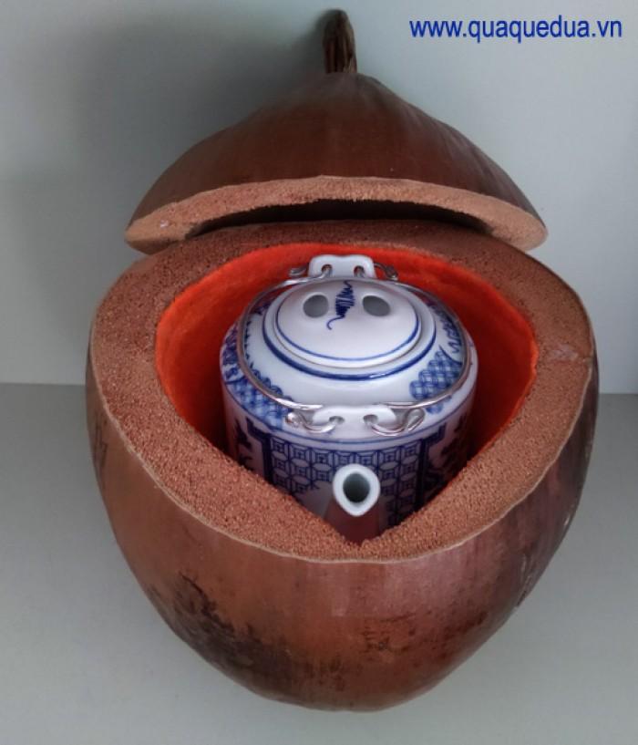Combo: Vỏ + bình trà trái dừa (Bình trà 0,5-0,75 lít)9