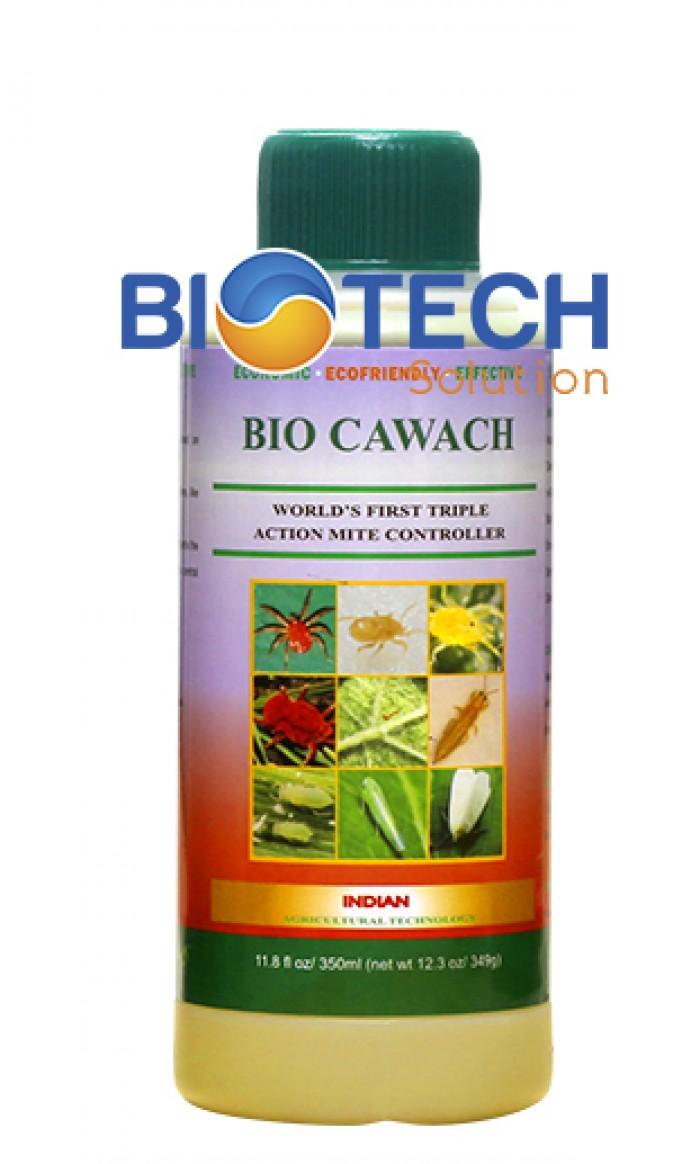 BIO CAWACH - Kiểm soát và trị kiến lửa gây hại cây trồng0