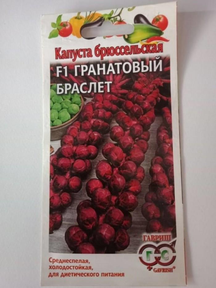 Hạt giống bắp cải mini tím nhập khẩu1