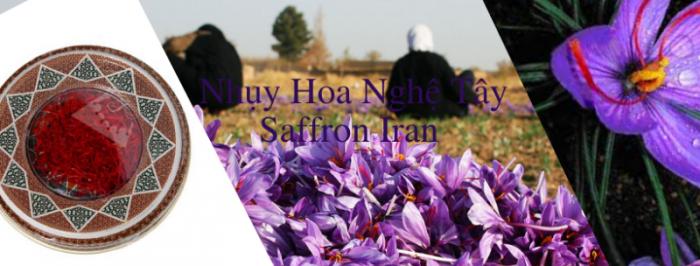 Trà nhụy hoa nghệ tây Iran 2gr-Saffron Iran check mã truy xuất nguồn gốc nhụy hoa nghệ tây 14
