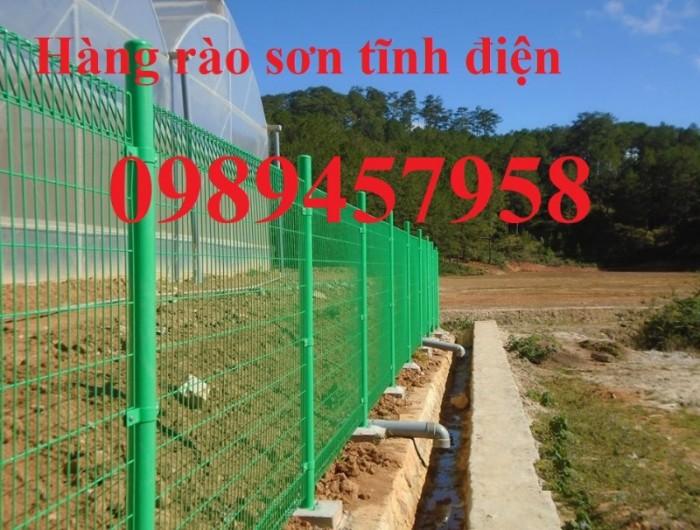 Hàng rào lưới thép hàn sơn tĩnh điện phi 5 ô 75x200 và 50x2501