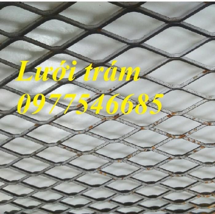 Lưới quả trám, lưới mắt cáo4