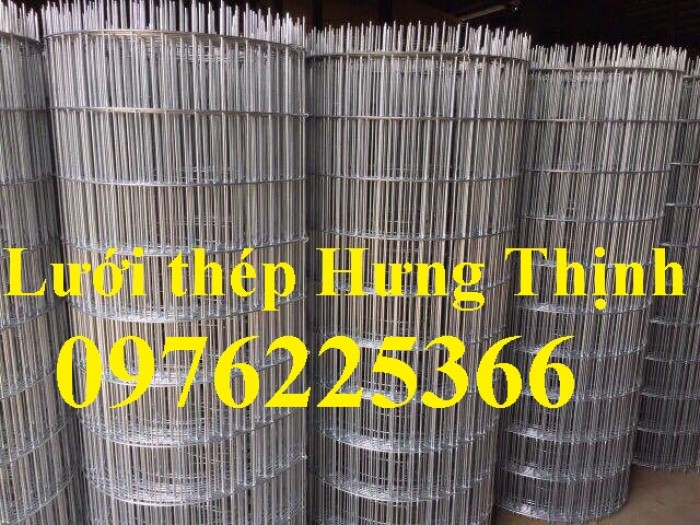 Lưới thép mạ kẽm ô 25x25mm,30x30mm, 50x50mm, 100x100mm5