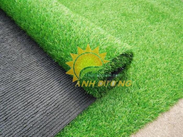 Thảm cỏ nhân tạo cao cấp cho trường mầm non, sân chơi trẻ em, sân bóng đá3