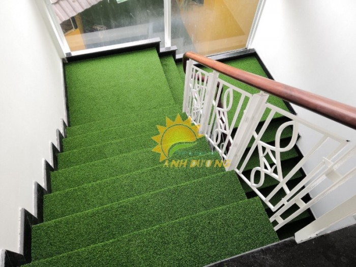 Thảm cỏ nhân tạo cao cấp cho trường mầm non, sân chơi trẻ em, sân bóng đá9